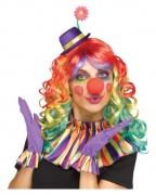 Clown Zubehör Set bunt