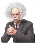 Graue Einstein Perücke