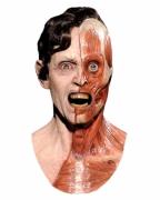 Gehäutet Maske mit Kunsthaar