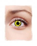 1-Tages Kontaktlinsen Werwolf gelb