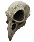 Krähen Totenschädel Maske