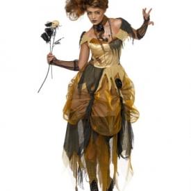 Aschenputtel Kostüm
