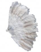 XXL Burlesque Federfächer weiß 50cm