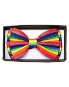 Rainbow Fliege Deluxe