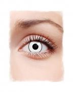 1-Tages Kontaktlinsen Manson weiß